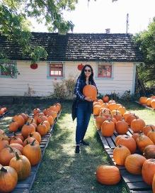 Found the perfect pumpkin